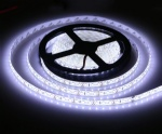12v smd2835 CW IP65 flex led strip 5 meters per roll with 600leds